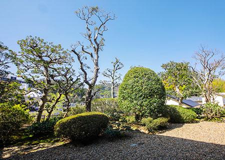 image:Garden